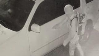 Franklin Vehicle Burglary - Home Surveillance.png