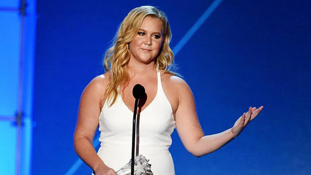 Amy Schumer buys back family farm as gift for father
