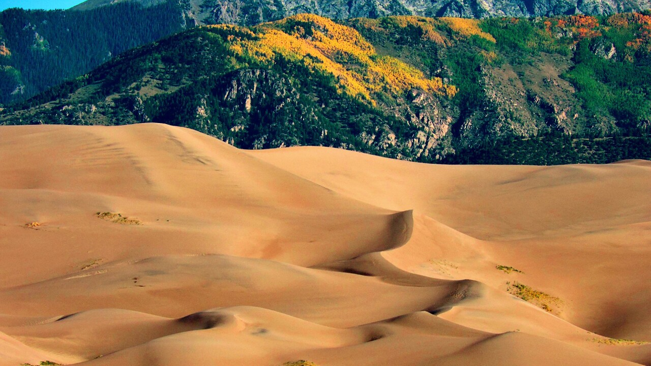 Great Sand Dunes National Park and Preserve in the Fall 13.jpg