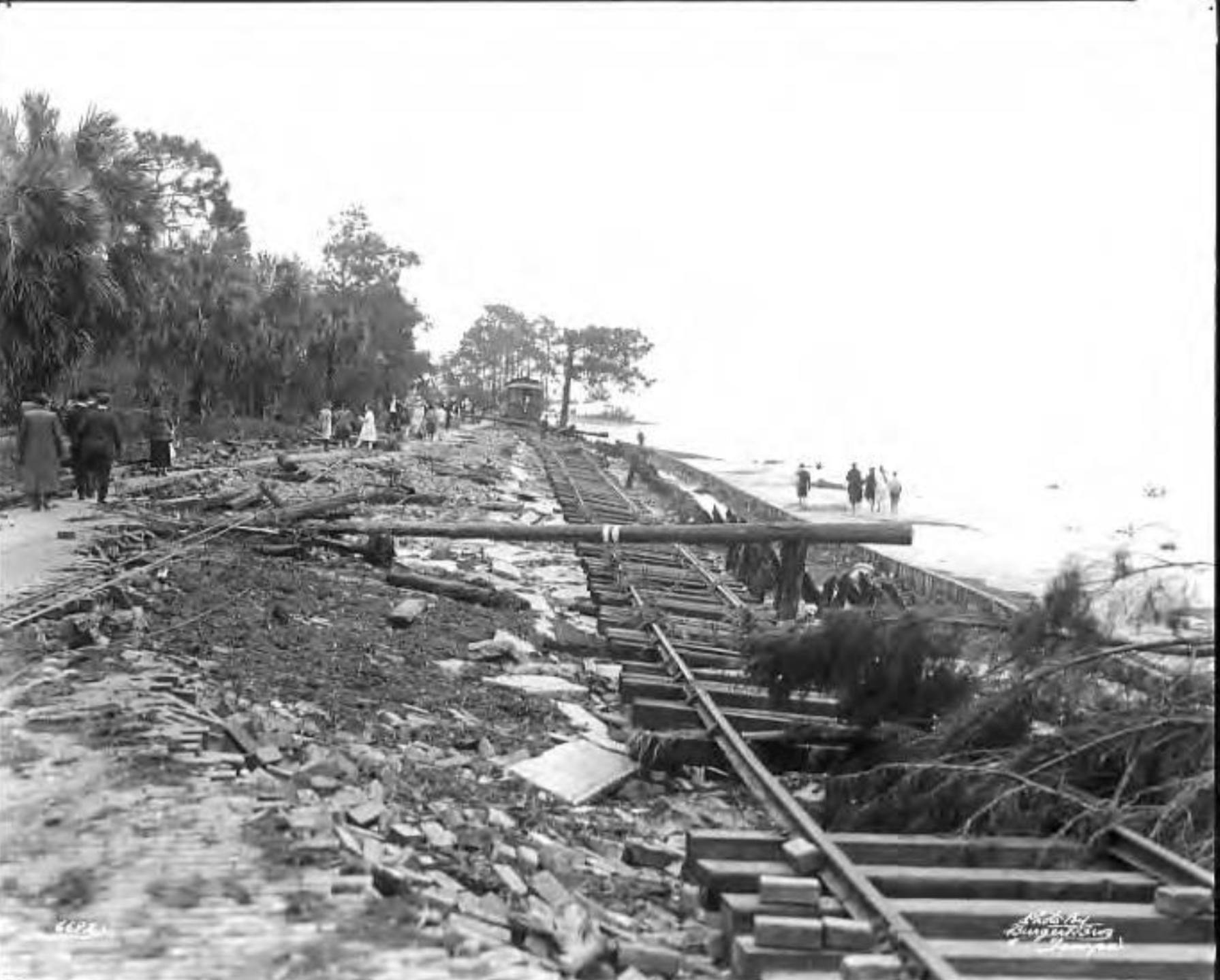 Scene of hurricane damage to Bayshore Boulevard and streetcar tracks.png