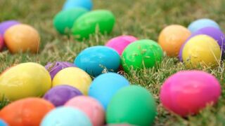 Easter egg hunts on the Central Coast