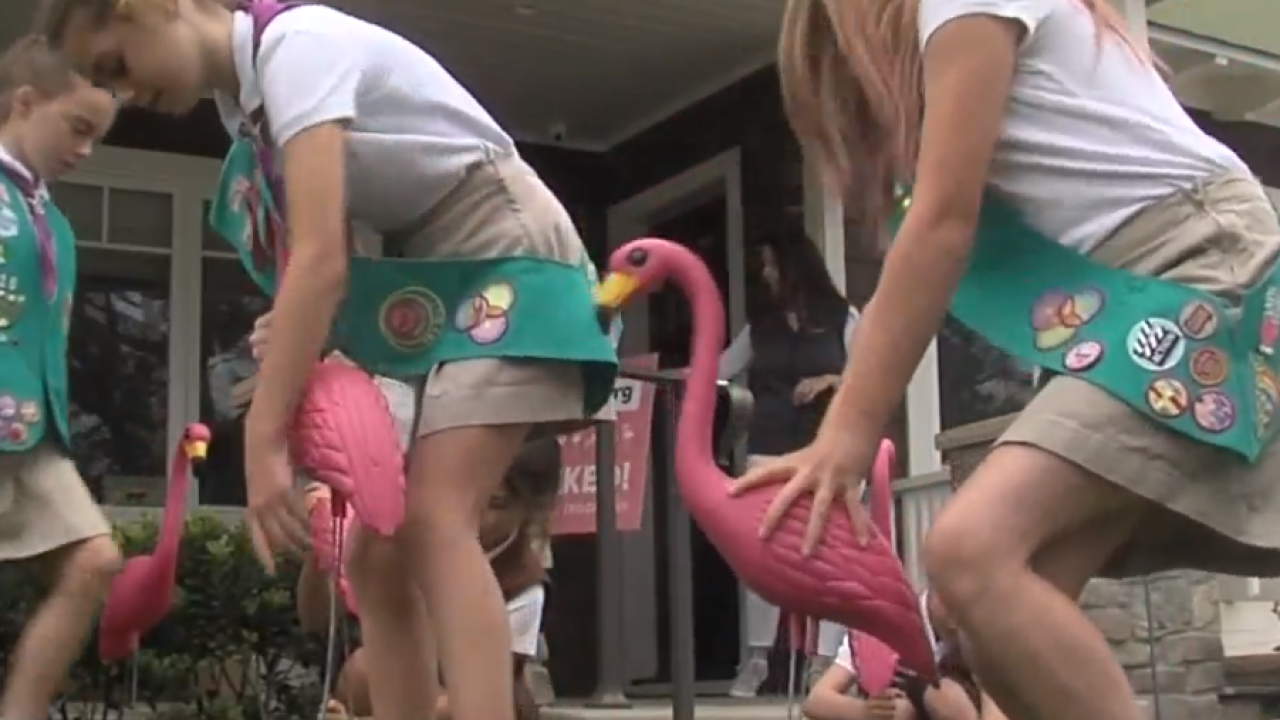 Girl Scout Flocking Fundraiser.png