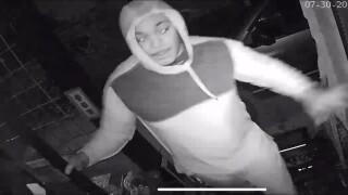 Lorain break-in suspects