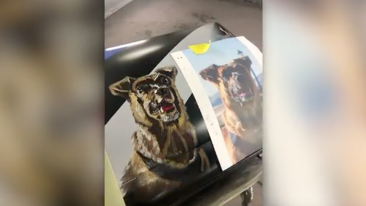 A Utah police dog killed in action is being buried in a custom coffin.