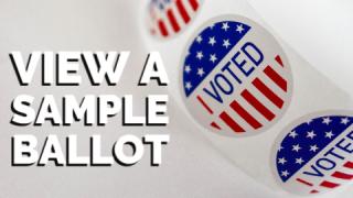 View a sample ballot