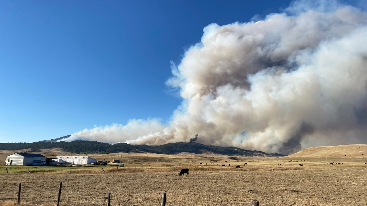 South Moccasin Fire