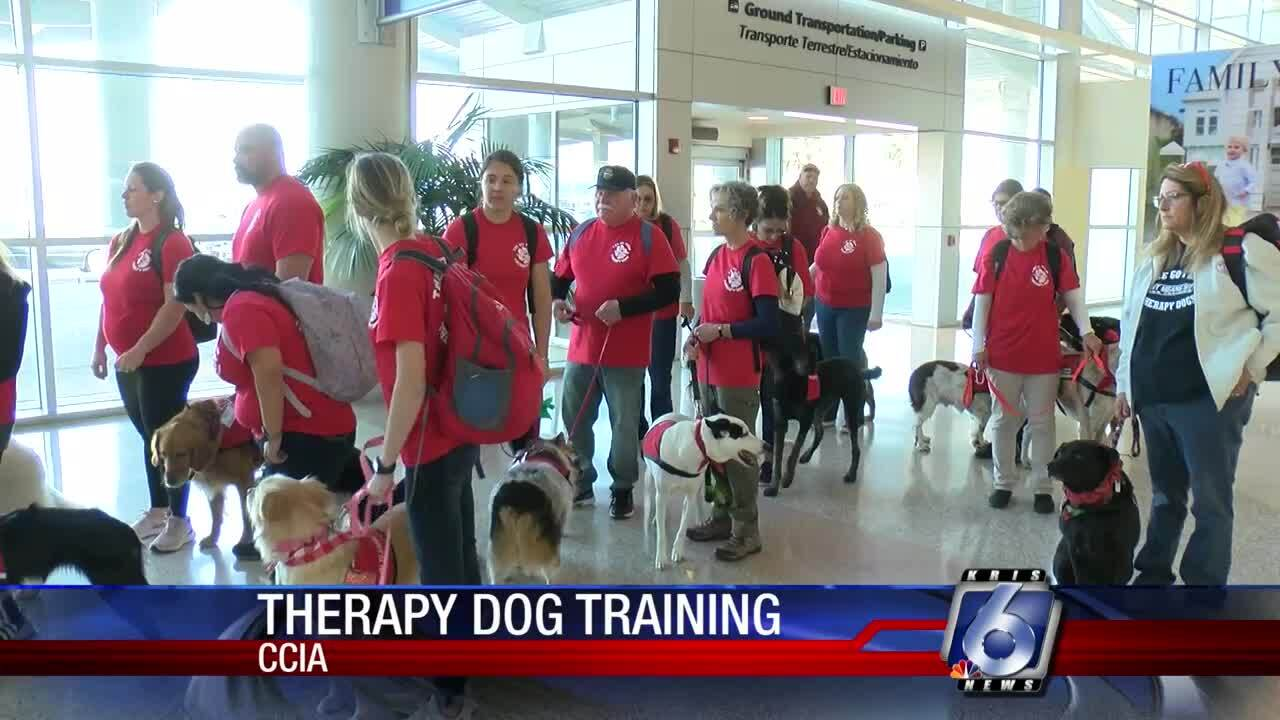 Go Therapy Dogs