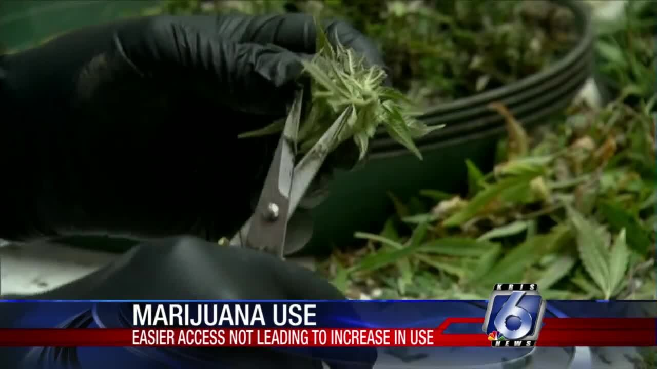 Study shows legalized marijuana doesn't lead to increased usage
