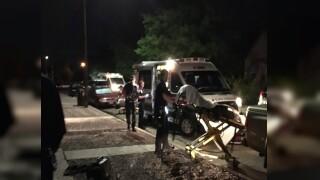 Pueblo Dog Attack Victims.jpg