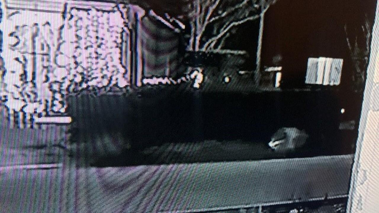 Vehicle of interest in Pueblo hit-and-run