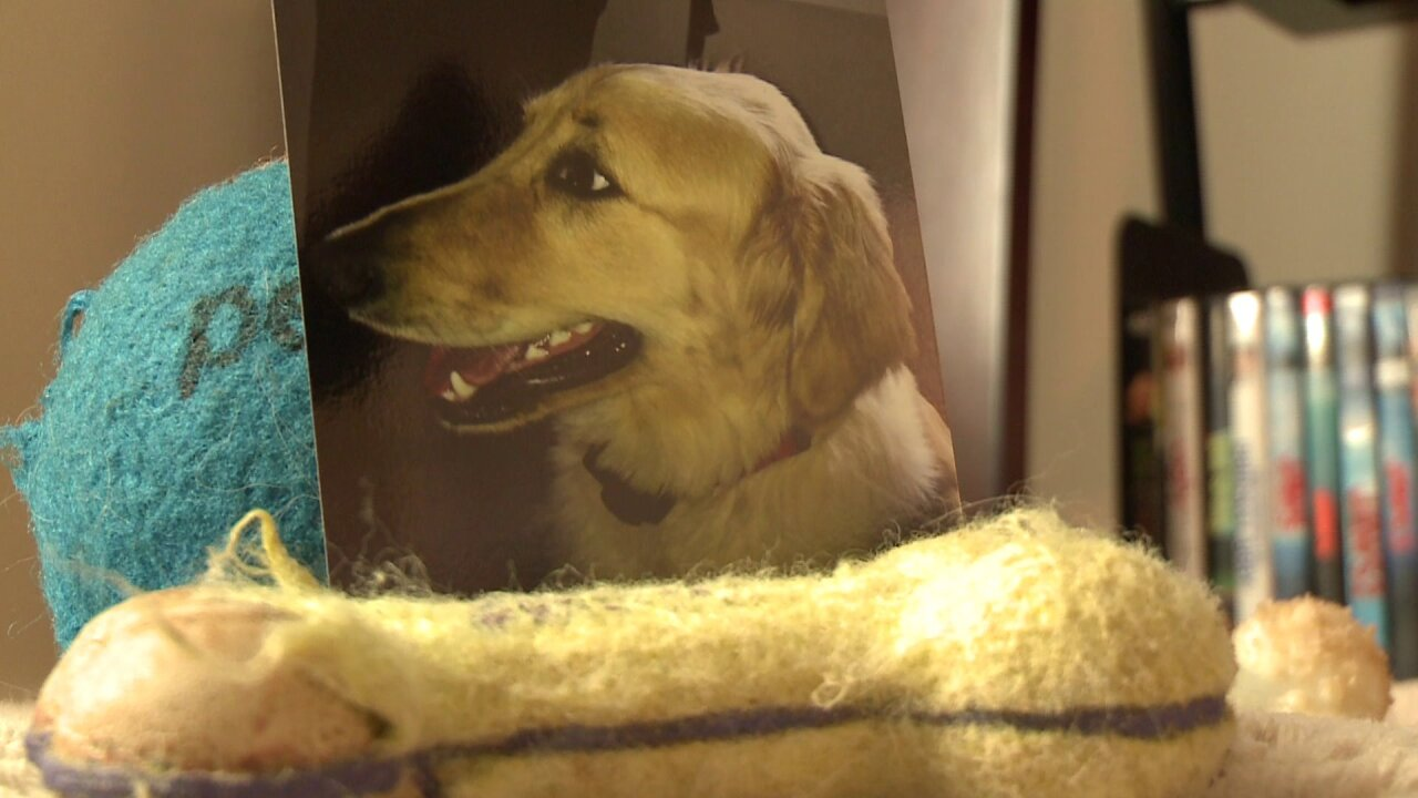 Family says dog died after being left in drying cage at Petco