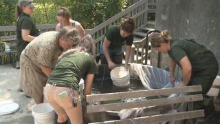 volunteers nature center.jpg