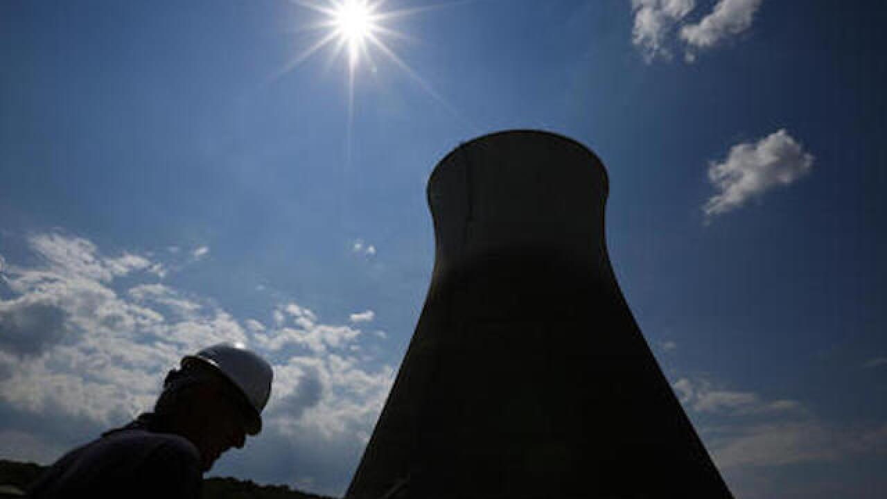 US nuclear plant up for sale at fraction of cost