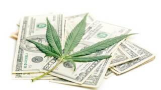 Nevada marijuana tax collections top $8M, set new record
