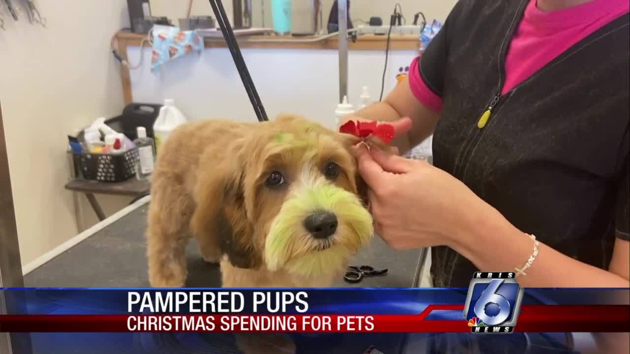 Pampering our pups for the holiday season