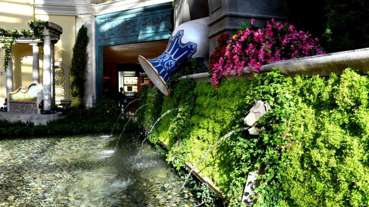 Bellagio conservatory highlights Italian summer
