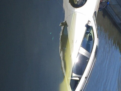 Photos: Car pulled from Cape Coral canal