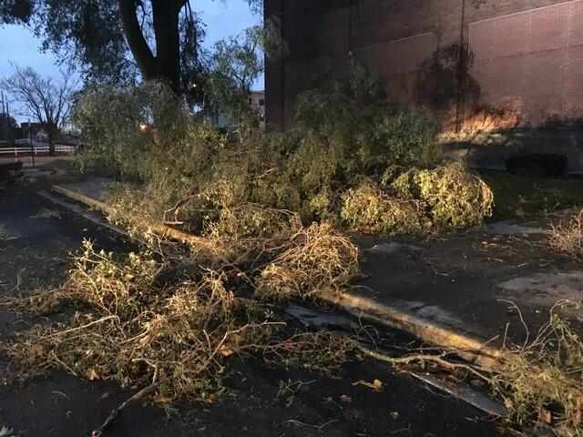 PHOTOS: Muncie storm damage from November 5
