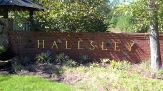 Hallsley sign letter 03.jpg