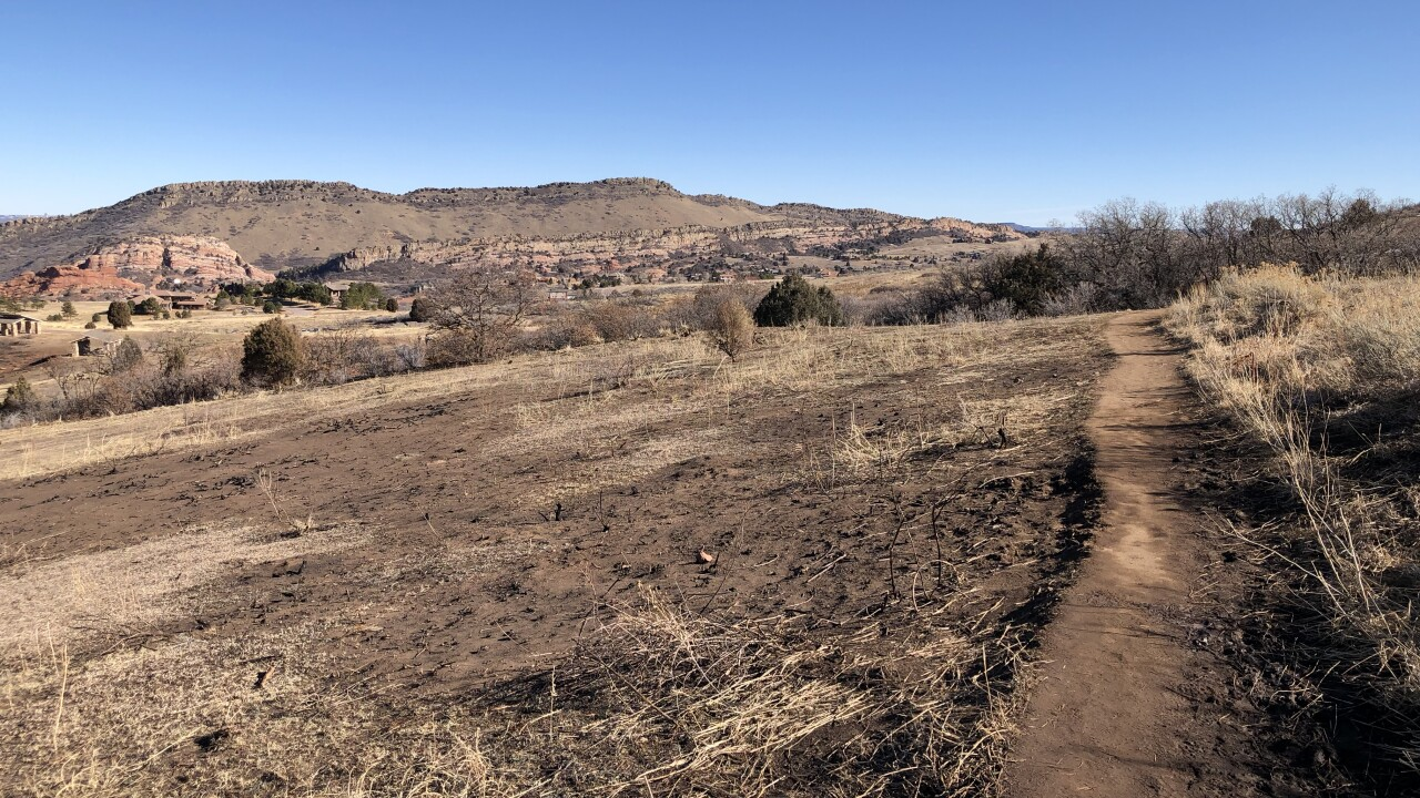 Deer Creek Canyon park_fire damage from Aug 2019_taken on Feb 2 2020
