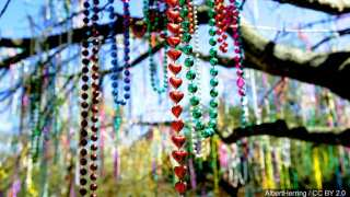 LARC's Beads and More store sells recycled Mardi Gras beads for a good cause