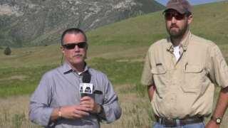 This Week in Fish and Wildlife: Cheatgrass program underway at Caverns