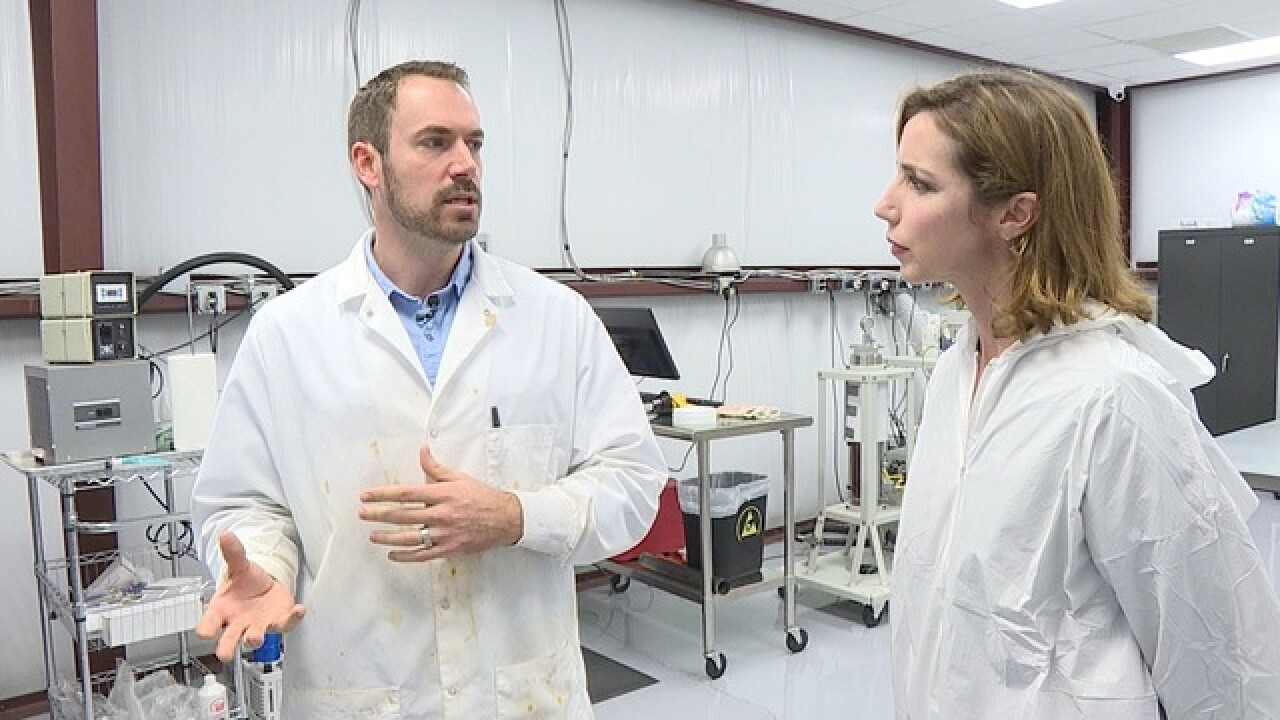 Behind-the-scenes of medical marijuana in FL