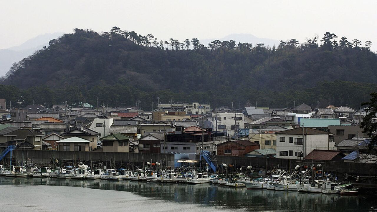 Tsunamis expected in Japanese coastal regions after earthquake