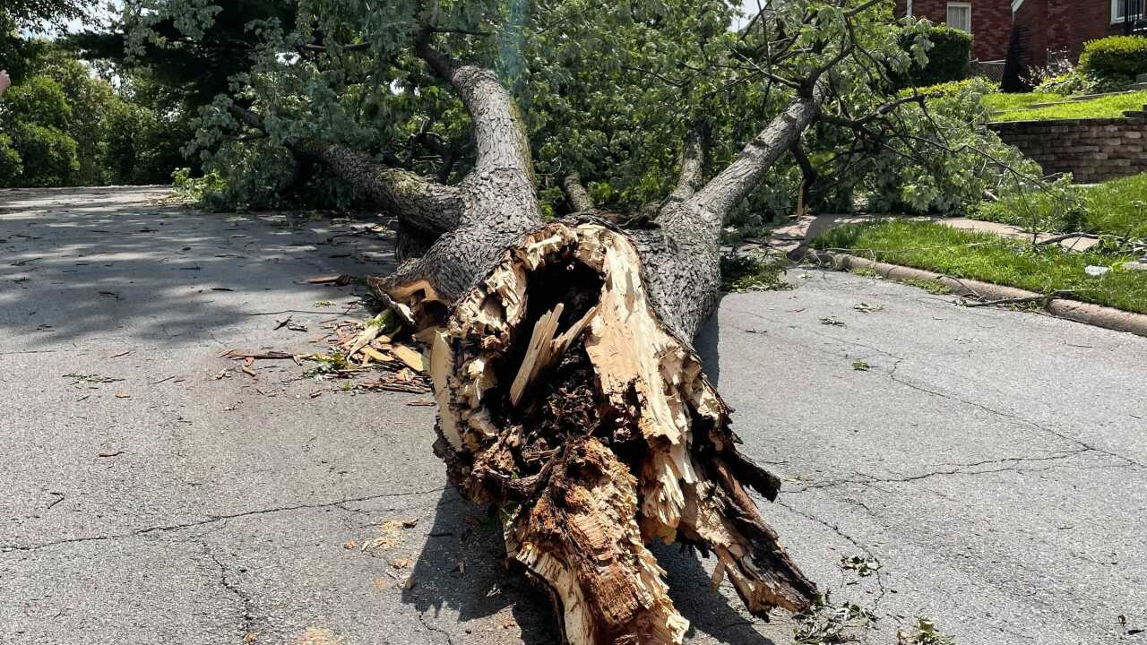 The city of Omaha provided numerous updates on Sunday afternoon regarding storm cleanup efforts in the city.