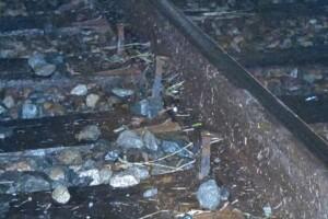 juvenile chase from Oscar Rivera train tracks 2.jpg