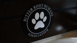 The new Bitter Root Human Association in Hamilton.