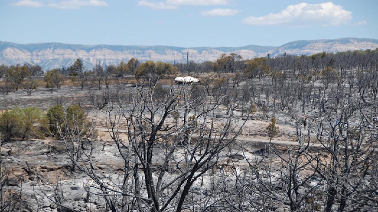 Spring Creek Fire 2: Voluntary home evacuations