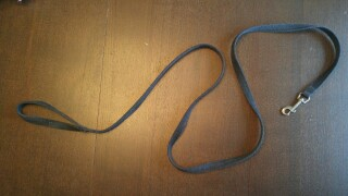 Dog leash.jpg