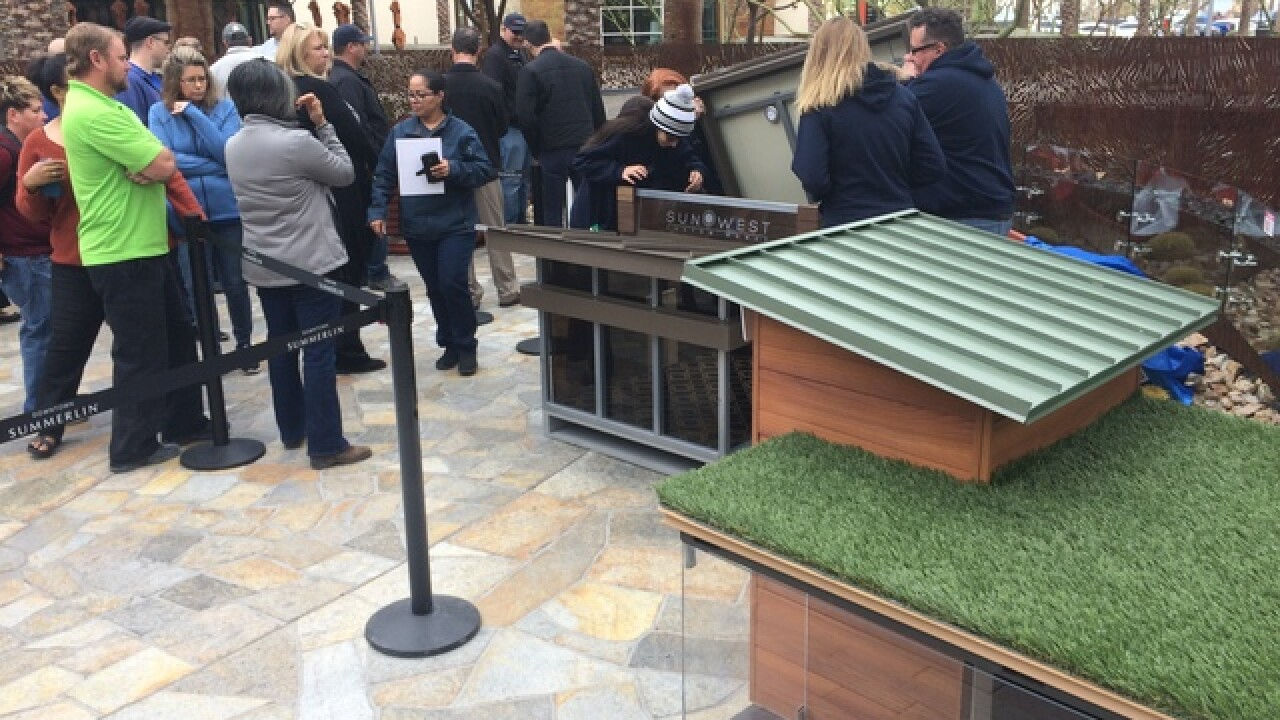 Barkitecture doghouses to benefit HomeAid