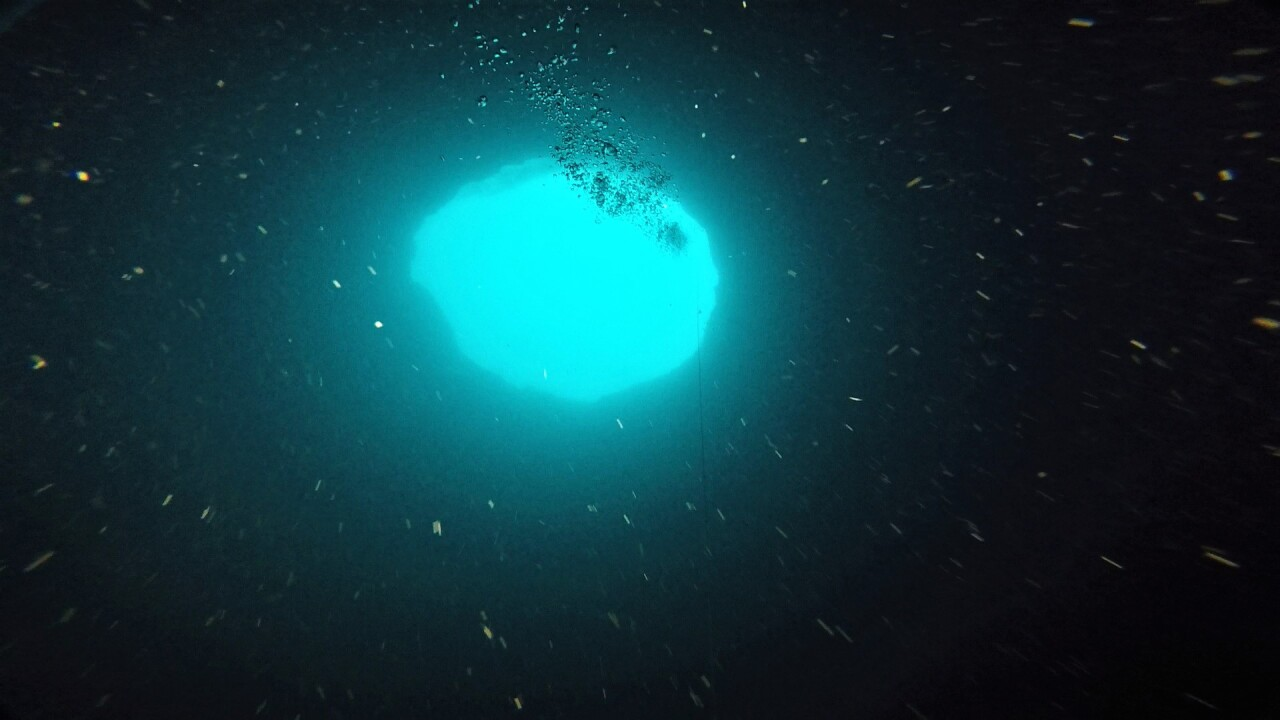 Scientists exploring mysterious 'blue holes' off Florida's Gulf Coast