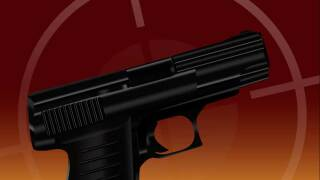 Gun (File Photo)
