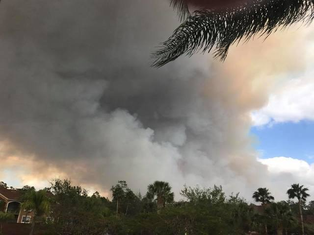 Photos: Picayune Strand fire near Naples (3/7/17)