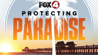 Protecting Paradise