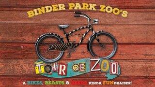 Tour de Zoo