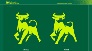 USF-bull-side-by-side-logo-comparison.png