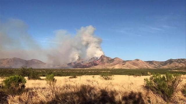 GALLERY: The Sawmill Fire