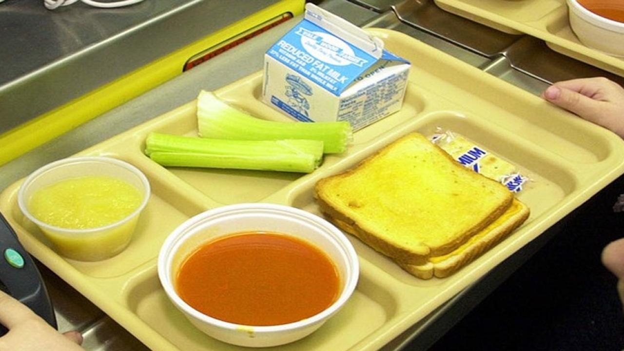 Generic-School-Lunch.png
