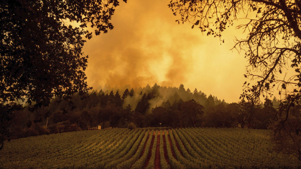 Firefighters hope dying winds will help them contain wildfire currently torching CA wine country