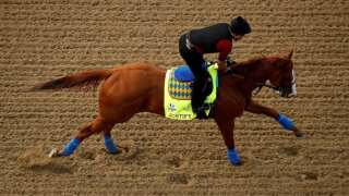 Justify Returning Home Wednesday