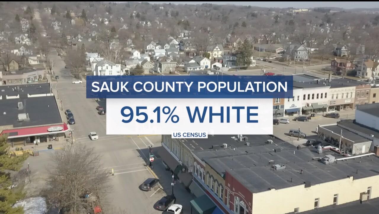 Sauk County's white population graphic
