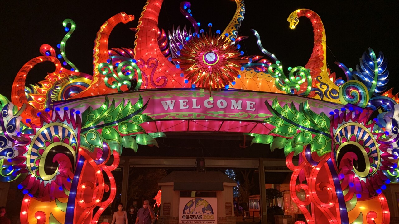 asian festival.jpg