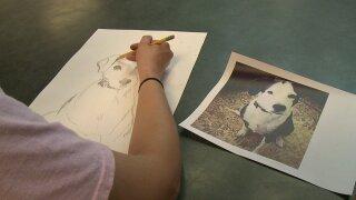 newaygo animal shelter portraits.jpeg