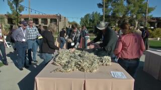 Montana Ag Network: Young Entrepreneurs host Wool Olympics