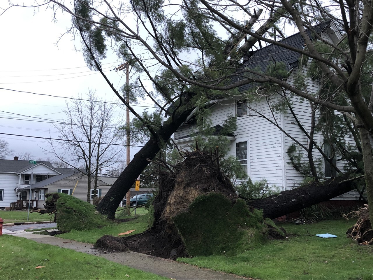 Daylight pictures of storm damage in Medina County.