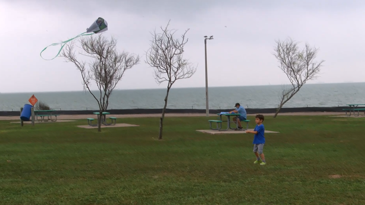 kid flying kite.PNG